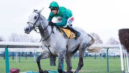 Bristol De Mai aims to bounce back at Cheltenham