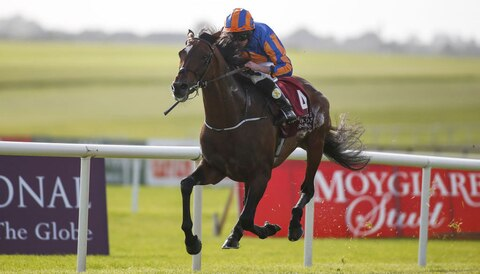Ascot Gold Cup: Order Of St George to see off Stradivarius
