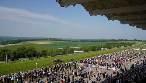 Glorious Goodwood: Tis Marvellous primed for Stewards' Cup glory