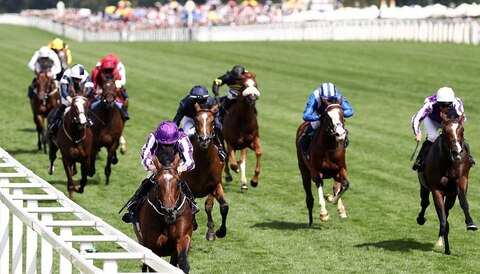 St Leger Festival tips: Kew Gardens to gain revenge