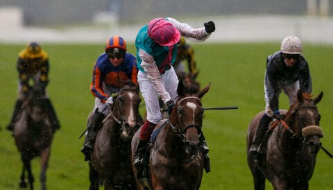 King George odds: Enable the one to beat at Ascot