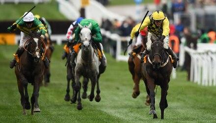 Cheltenham betting tips: Friday's selections